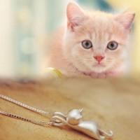 Collier et boucles d'oreilles chats